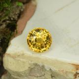 thumb image of 0.8ct Round Facet Yellow Golden Sapphire (ID: 453383)