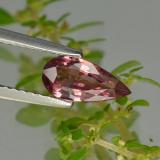 thumb image of 0.9ct Pear Facet Pinkish Rose Sapphire (ID: 467928)