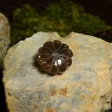 thumb image of 14ct Carved Flower Smoky Brown Smoky Quartz (ID: 255240)