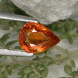 thumb image of 1.4ct Pear Facet Red Orange Spessartite Garnet (ID: 350803)
