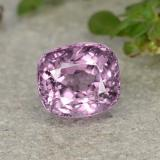 thumb image of 1.2ct Cushion-Cut Purple Pink Spinel (ID: 483625)