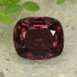 thumb image of 1.2ct Cushion-Cut Purplish Red Spinel (ID: 484581)