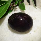 thumb image of 31.2ct Oval Cabochon Reddish Black Star Garnet (ID: 325625)