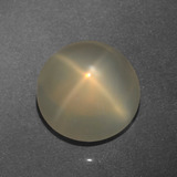 thumb image of 5.5ct Round Cabochon Cream Star Moonstone (ID: 418700)