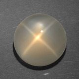thumb image of 7ct Round Cabochon Cream Star Moonstone (ID: 418726)