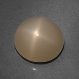 thumb image of 7.7ct Round Cabochon Cream Peach Star Moonstone (ID: 418756)