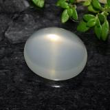 thumb image of 5.1ct Oval Cabochon Cream Star Moonstone (ID: 490440)