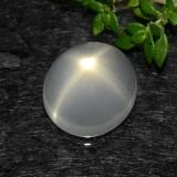 thumb image of 5ct Oval Cabochon Cream Star Moonstone (ID: 490446)