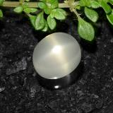 thumb image of 3.7ct Oval Cabochon Cream Star Moonstone (ID: 490608)
