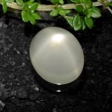 thumb image of 5.9ct Oval Cabochon Cream Star Moonstone (ID: 490613)