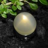 thumb image of 5.4ct Round Cabochon Cream Star Moonstone (ID: 490936)