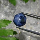 thumb image of 1.9ct Hexagon Cabochon Blue Star Sapphire (ID: 462585)