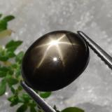 thumb image of 6.3ct Oval Cabochon Black Star Sapphire (ID: 470217)