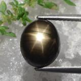thumb image of 5.5ct Oval Cabochon Black Star Sapphire (ID: 470222)