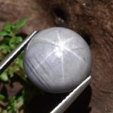 10.97 ct Cabochon rond Light Grey Saphir Étoilé gemme 11.52 mm  (Photo B)