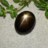 thumb image of 1.7ct Oval Cabochon Black Star Sapphire (ID: 486772)