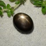 thumb image of 1.5ct Oval Cabochon Black Star Sapphire (ID: 486773)