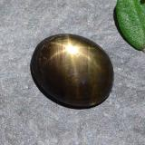 thumb image of 1.4ct Oval Cabochon Black Star Sapphire (ID: 487257)