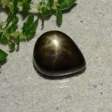 thumb image of 1.9ct Pear Cabochon Black Star Sapphire (ID: 488739)