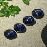 thumb image of 1.5ct Oval Cabochon Deep Navy Blue Star Sapphire (ID: 490169)
