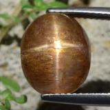 thumb image of 6.9ct Oval Cabochon Golden-Brown Star Sunstone (ID: 471168)