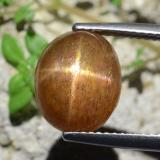 thumb image of 6.1ct Oval Cabochon Golden-Brown Star Sunstone (ID: 471170)