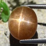 thumb image of 8.3ct Oval Cabochon Golden-Brown Star Sunstone (ID: 471172)