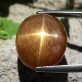 thumb image of 13.5ct Oval Cabochon Golden-Brown Star Sunstone (ID: 471177)