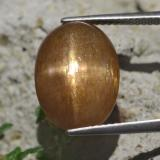 thumb image of 9.6ct Oval Cabochon Golden-Brown Star Sunstone (ID: 471190)