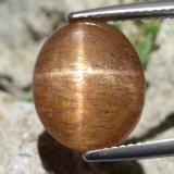 thumb image of 8.3ct Oval Cabochon Golden-Brown Star Sunstone (ID: 471215)
