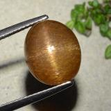 thumb image of 7.5ct Oval Cabochon Golden-Brown Star Sunstone (ID: 486317)