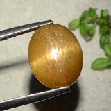 thumb image of 5.9ct Oval Cabochon Golden-Brown Star Sunstone (ID: 486318)