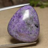 thumb image of 19ct Trillion Cabochon Multicolor Sugilite (ID: 490045)
