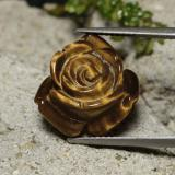 thumb image of 11.4ct Carved Rose with Hole Gold Brown Tiger's Eye (ID: 343481)