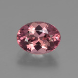 thumb image of 1.6ct Oval Facet Rose Pink Tourmaline (ID: 419617)