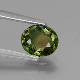 thumb image of 0.8ct Oval Facet Yellow Green Tourmaline (ID: 434483)