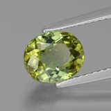1.48 ct Oval Facet Yellowish Green Tourmaline Gem 7.69 mm x 6.5 mm (Photo B)