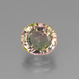 thumb image of 1.5ct Oval Facet Bi-color Tourmaline (ID: 446439)