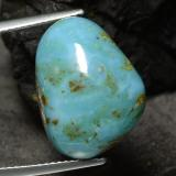 thumb image of 8.8ct Fancy Cabochon Blue Green Turquoise (ID: 473217)