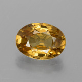 thumb image of 1.9ct Oval Facet Golden Zircon (ID: 430728)